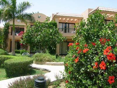 Фото отеля Ali Baba Palace 4* (Али Баба Палас 4*) - Сад