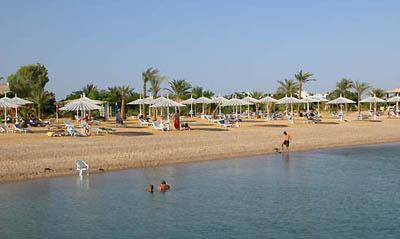 ���� ����� Hilton Nuweiba Coral Resort 4* (������ ������� ����� ������ 4*)
