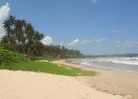Фото - Шри-Ланка
