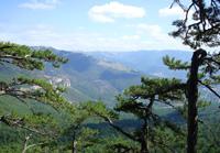 Фото - Ялтинский горно-лесной природный заповедник - Ялта, Крым