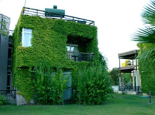 Фото отеля Simena Holiday Village & Villas HV1 (Симена Холидей Виллэдж энд Виллас HV1)