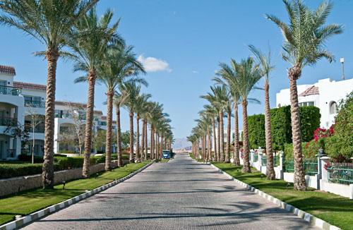 Фото отеля Aurora Cyrene Resort 4* (Аврора Сирен Резорт 4*)