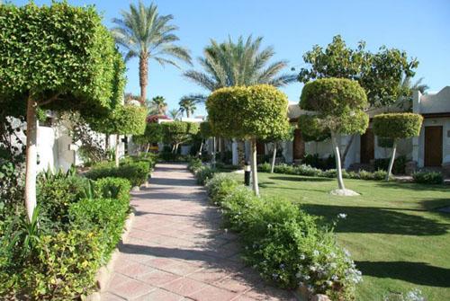 Фото отеля Hilton Fayrouz Resort 4* (Хилтон Файроуз Резорт 4*)