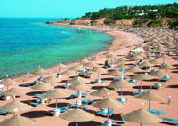 Фото отеля Domina Coral Bay Oasis 5* (Домина Корал Бей Оазис 5*)