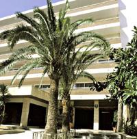 Фото отеля Ipanema Park 3* (Ипанема Парк 3*)