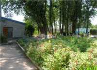 Фото детского оздоровительного лагеря «Прибрежный» (Лазурное, Херсонская область)