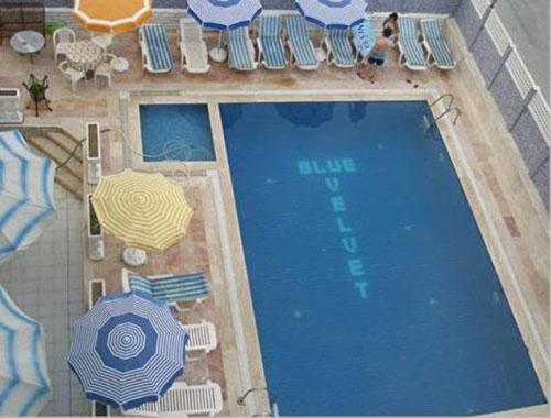 Фото отеля Blue Velvet Hotel 3* (Блю Вельвет Отель 3*)