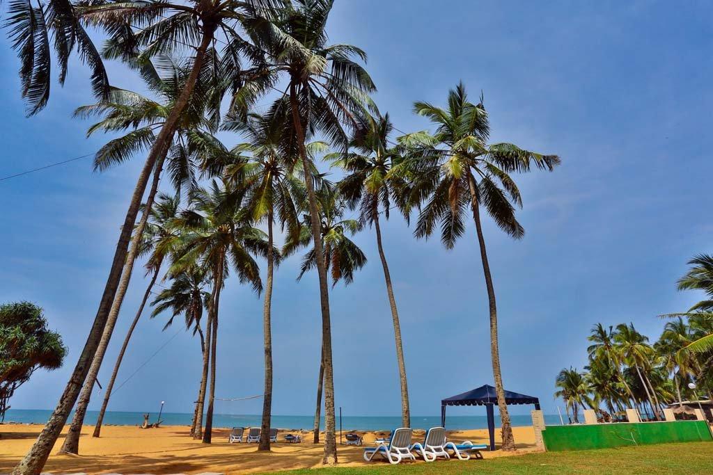 Фото отеля Amagi Beach 3* (Амаги Бич 3*)